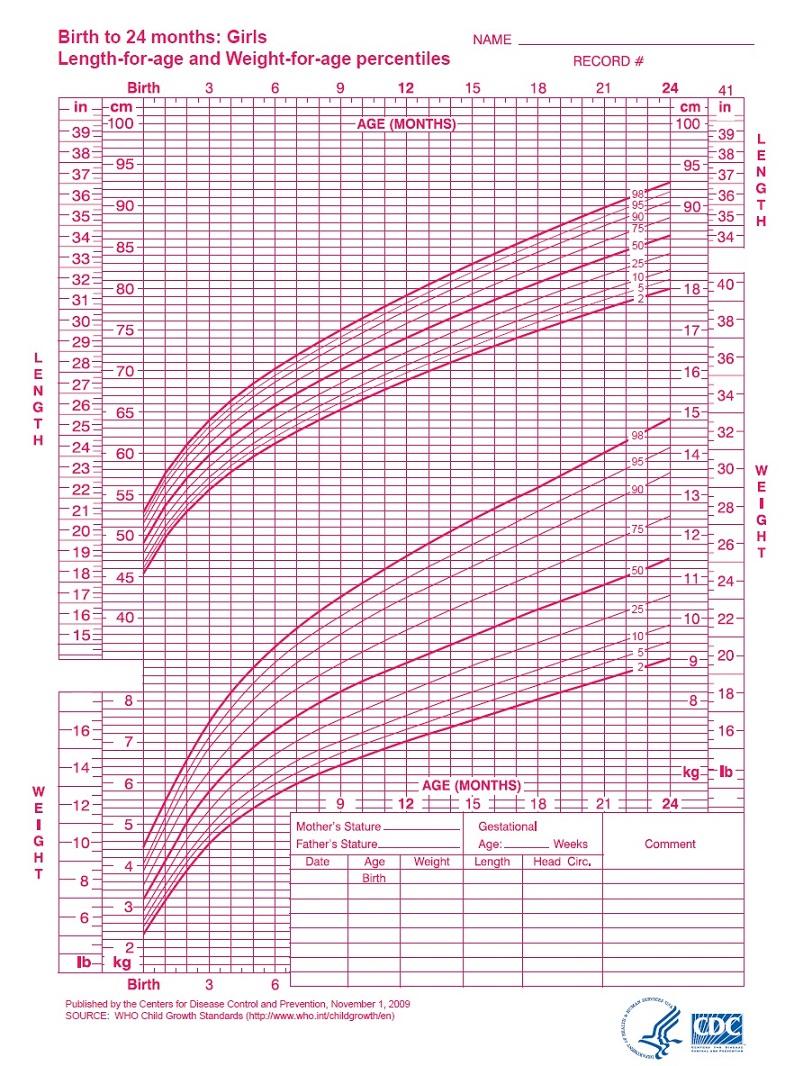 Grafik Berat Badan Bayi
