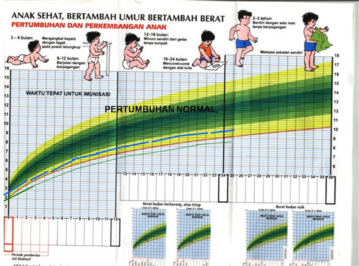 Berat Badan & Tinggi Normal Bayi 9 Bulan