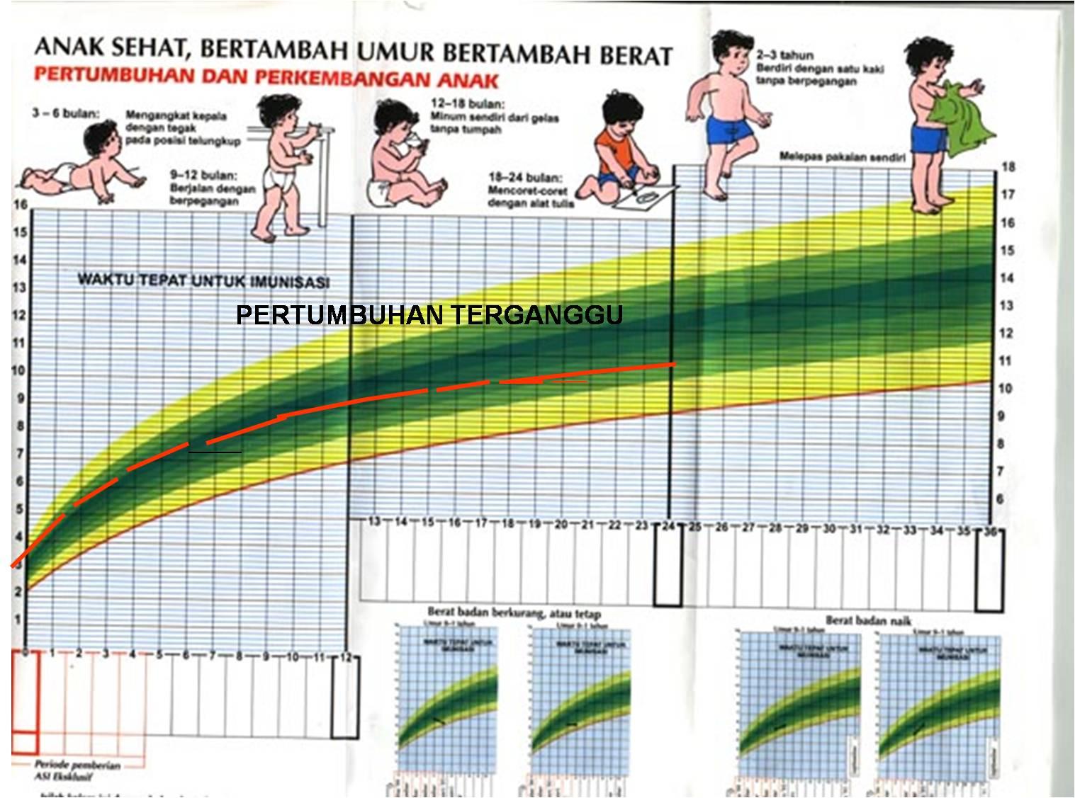 Tabel Berat Badan Bayi Ideal Pada Masa 0-12 Bulan